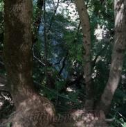 Водопады Ручья Руфабго 57