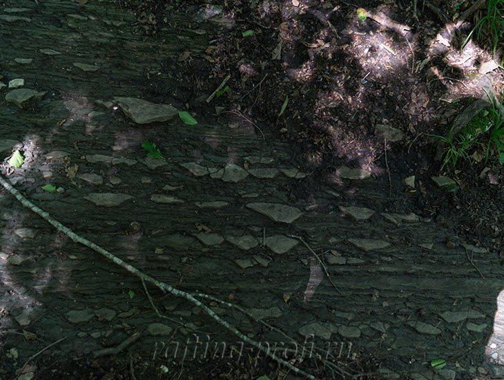 Водопады Ручья Руфабго 39