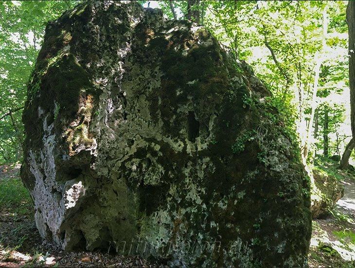 Водопады Ручья Руфабго 38
