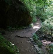 Водопады Ручья Руфабго 19