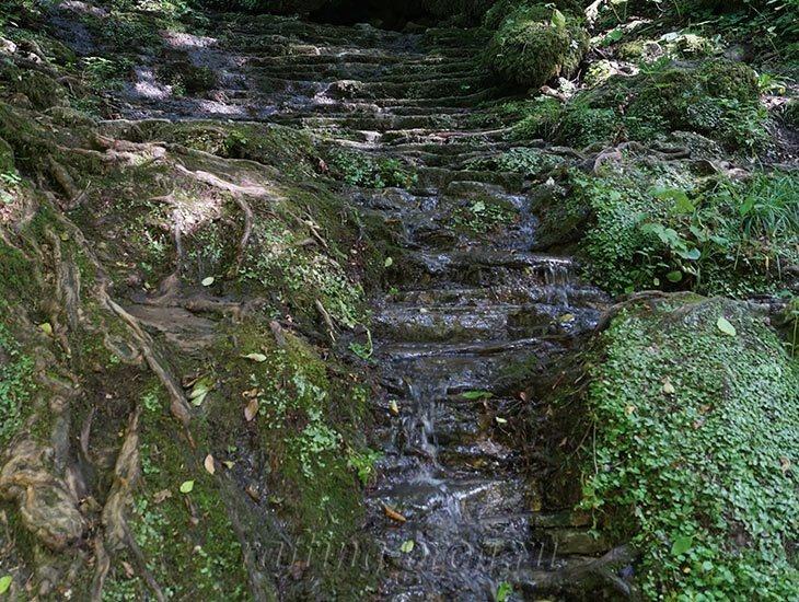 Водопады Ручья Руфабго 15