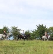 Конные Прогулки В Горах Адыгеи 9