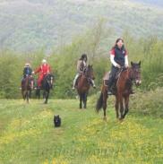 Конные Прогулки В Горах Адыгеи 15