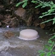 Ущелье Водопадов. Экскурсия На Выходные 21
